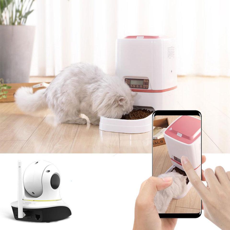 wireless-pet-camera